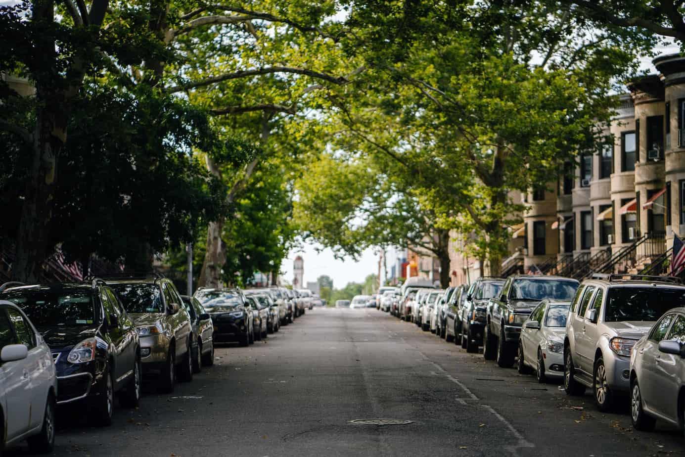 Unter welchen Bäumen sollte man nicht parken?